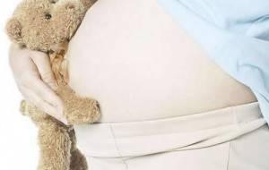 Ursinho abraçado a uma barriga de grávida